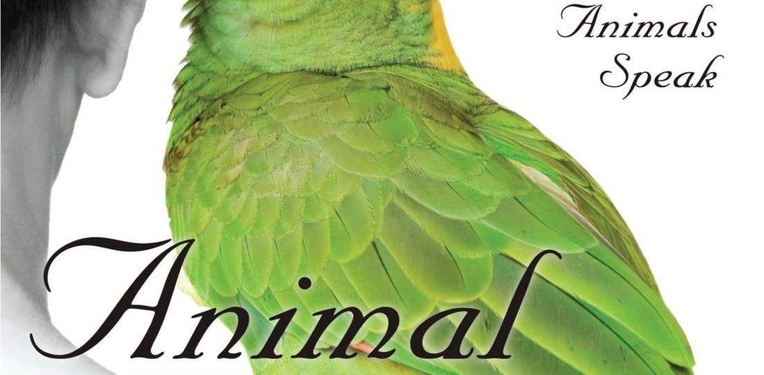 animal-talk22